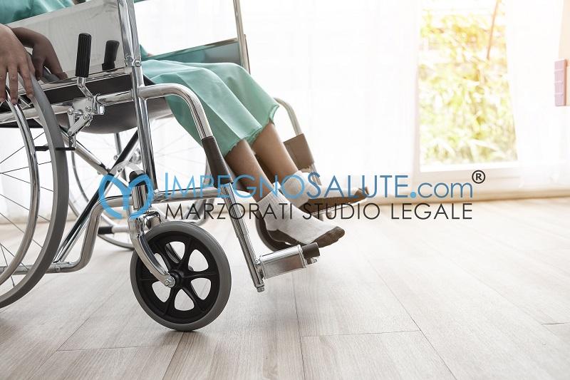 -Sedia a rotelle