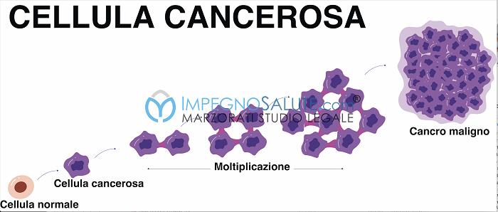 Cellula cancerosa